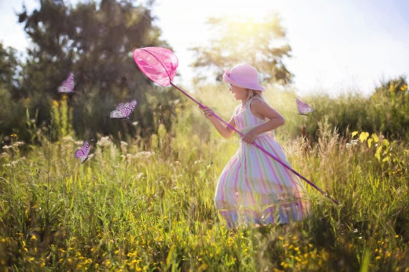 Le farfalle possono nascondere un significato
