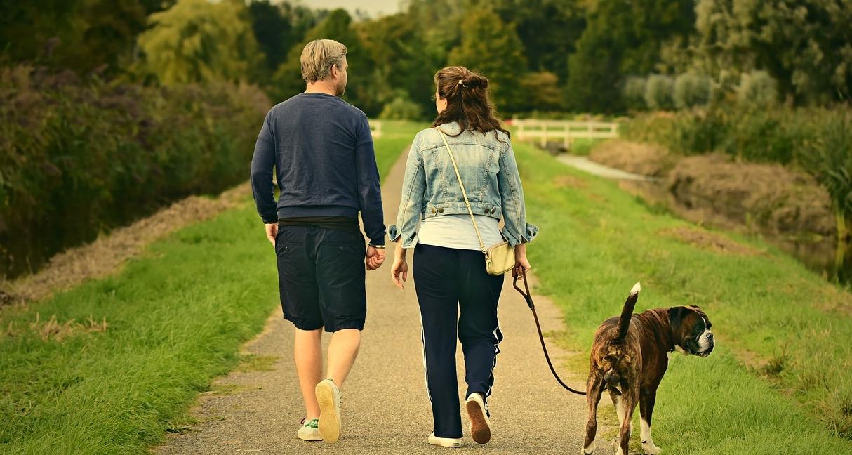 Benefici di una passeggiata: ecco perchè è di vitale importanza