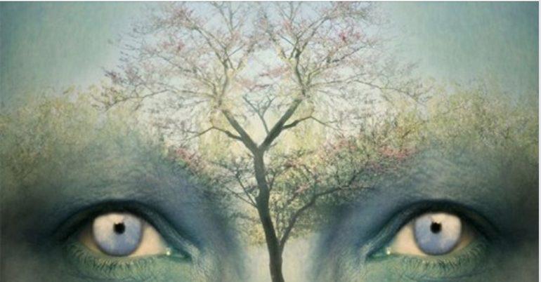 Il test dell'albero di Karl Koch: sapete come funziona la vostra emotività?
