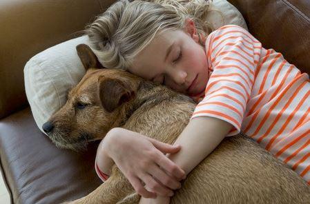 Perchè fa bene dormire con il cane