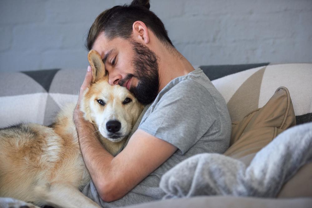 Amare il cane come un figlio