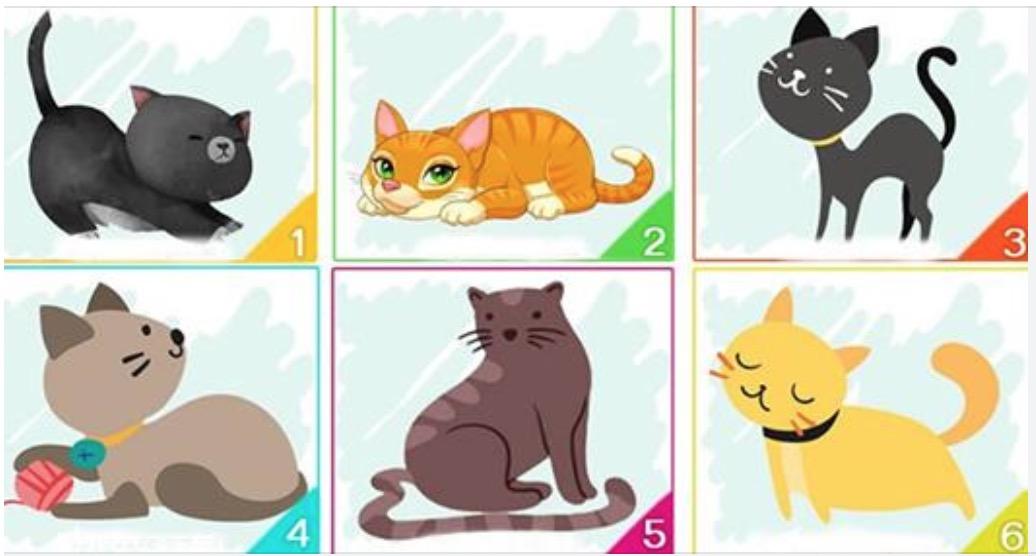 Test del gatto: scegline uno e scopri qualcosa sulla tua personalità