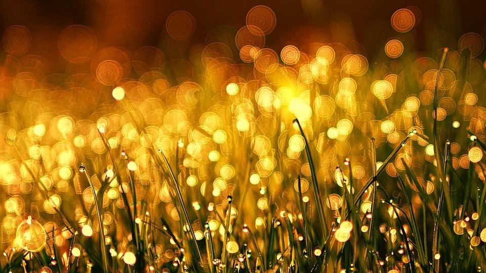 colore della tua aurea