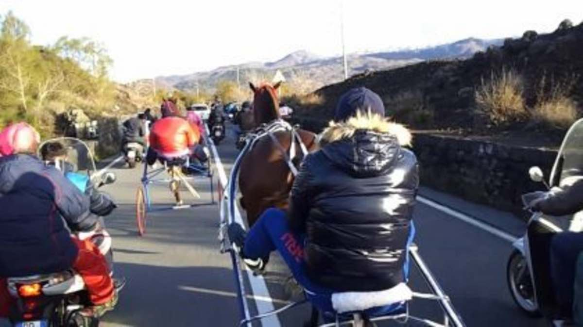 Coronavirus, a Sora corsa di cavalli clandestina