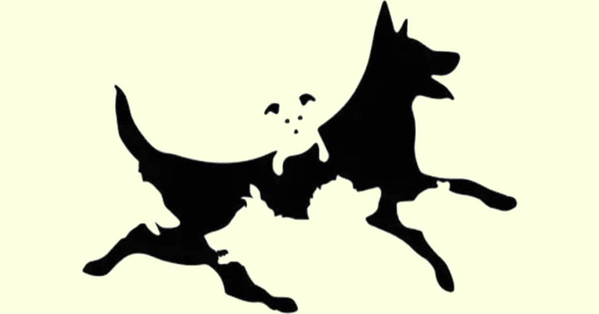 Test psicologico quanti cani vedi
