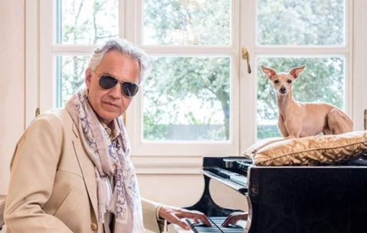 Andrea Bocelli, l'appello per la cagnolina smarrita