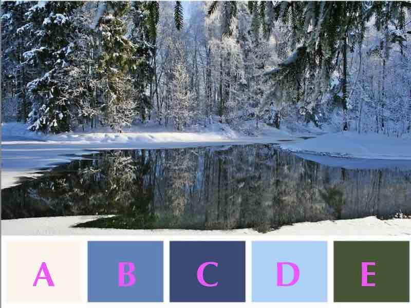 Quale colore noti per primo nell'immagine?