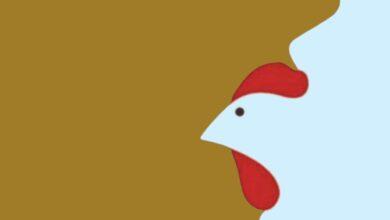 Photo of Test psicologico: vedi una donna, un uomo o un uccello nell'immagine? La tua risposta rivela gli aspetti più nascosti della tua personalità
