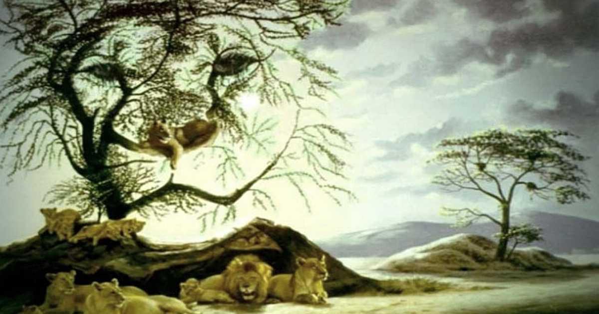 Test psicologico_ il numero di leoni che riesci a trovare nell'immagine