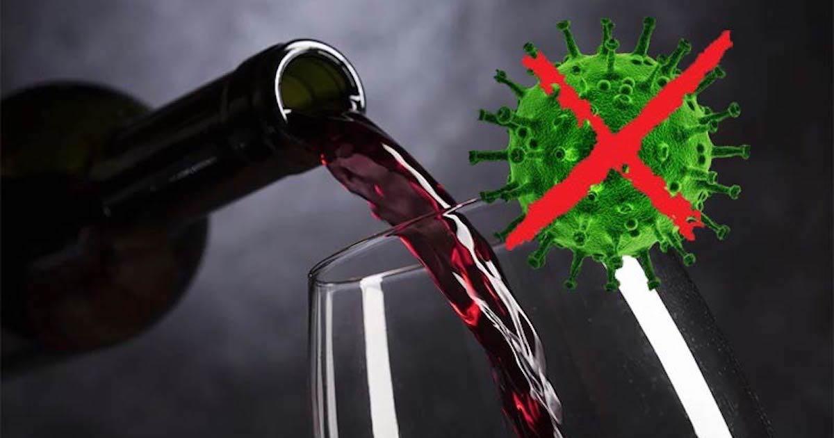vino uccide batteri