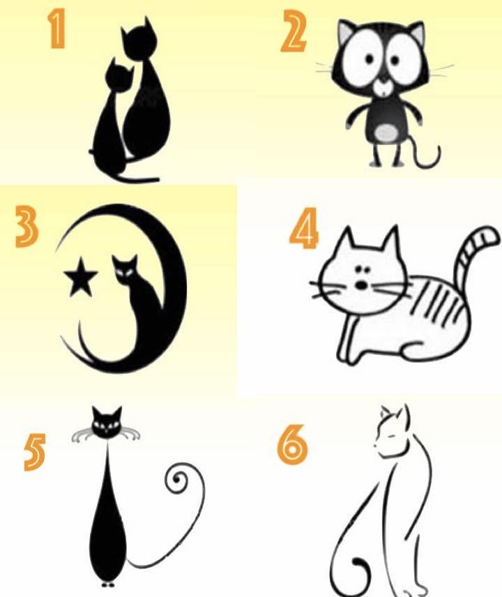 scegli un gatto