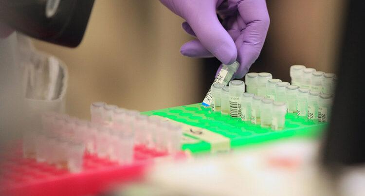 Farmaco immunità