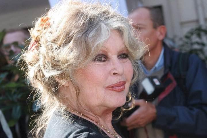 Brigitte Bardot la rabbia contro il governo francese