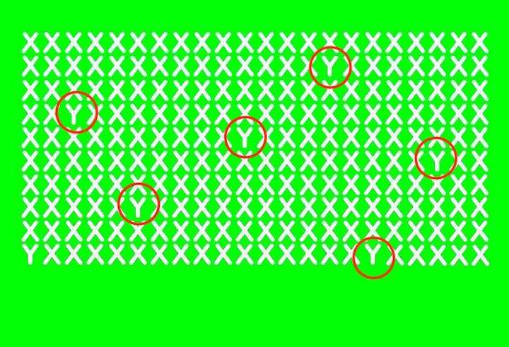 Puzzle ottico- trova le 6 Y risposta